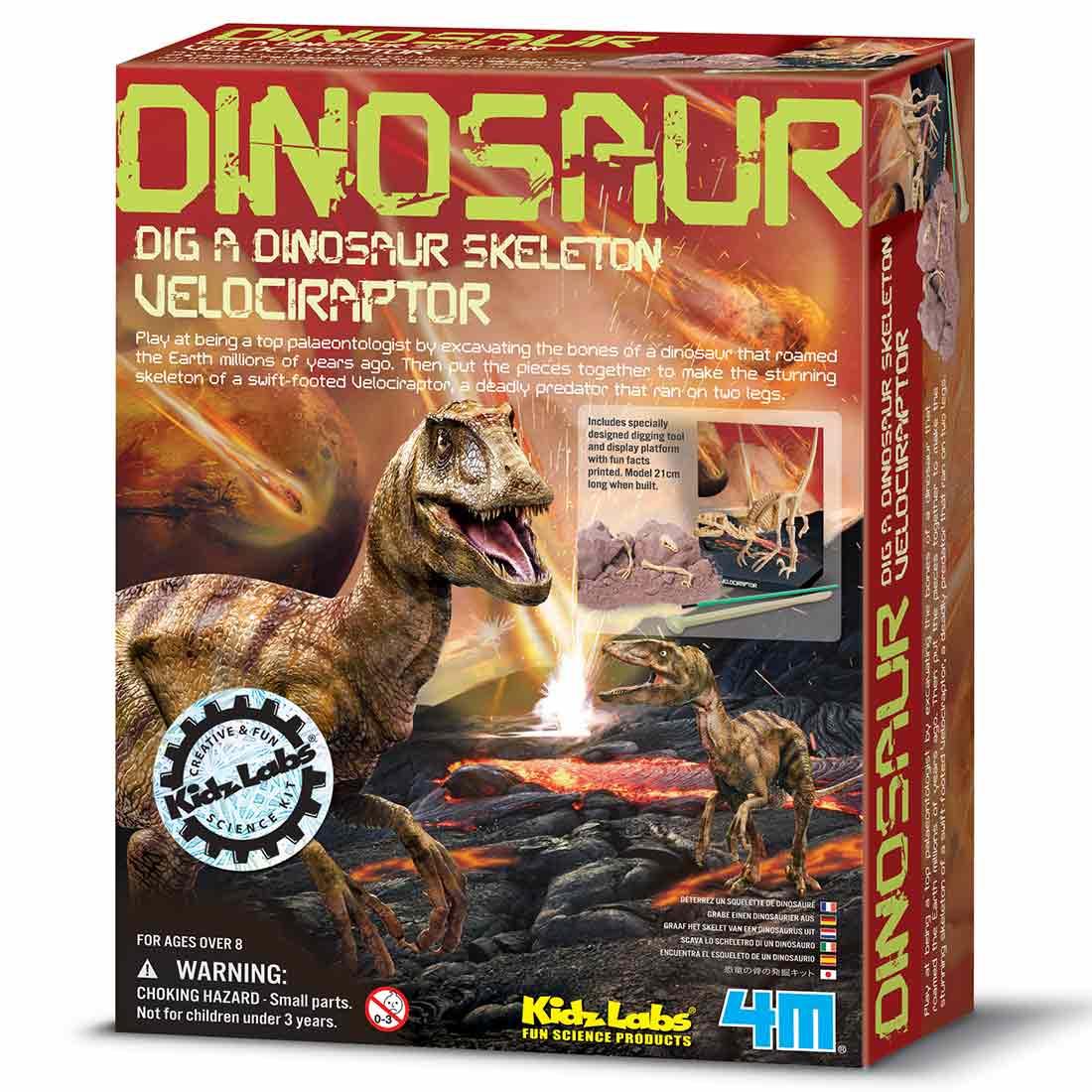 חפירת שלד דינוזאור Velociraptor קיט מדע וטבע לילדים