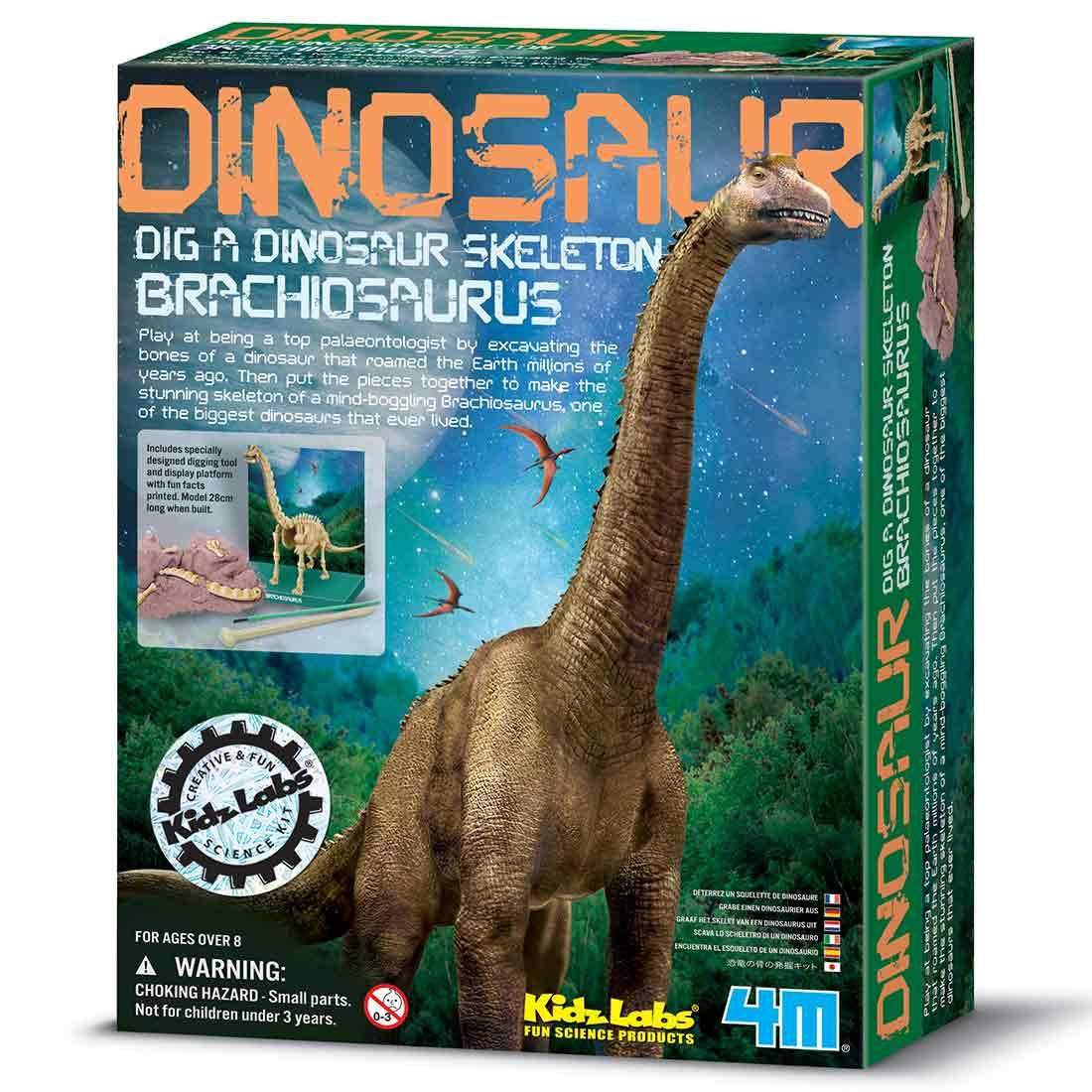 חפירת שלד דינוזאור Brachiosaurus ערכת ארכאולוגיה לילדים