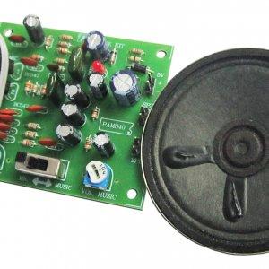 מיני מגפון מיקרופון רמקול – ערכת אלקטרוניקה לתלמיד
